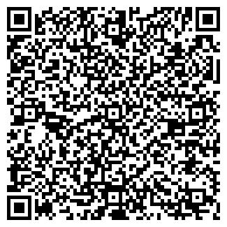 QR-код с контактной информацией организации Бис, ИП
