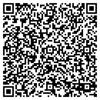 QR-код с контактной информацией организации Публичное акционерное общество OZIN GROUP