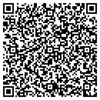QR-код с контактной информацией организации Субъект предпринимательской деятельности Озирис