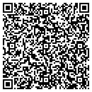 QR-код с контактной информацией организации stella