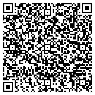 QR-код с контактной информацией организации Наука24, ЧП