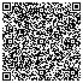 QR-код с контактной информацией организации Леди Драйв, ЧП