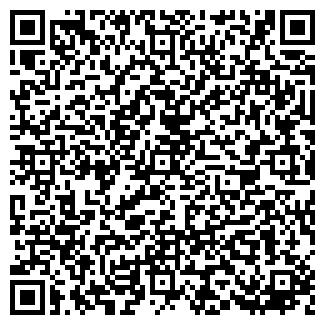QR-код с контактной информацией организации Махлин, ЧП