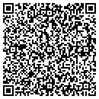 QR-код с контактной информацией организации Елена, ЧП