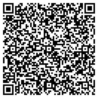 QR-код с контактной информацией организации Салон Вива, ИП