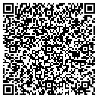 QR-код с контактной информацией организации Виккрис