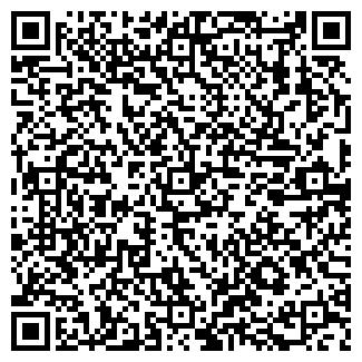 QR-код с контактной информацией организации Другая ИП Шинкевич