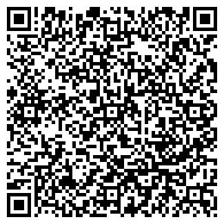 QR-код с контактной информацией организации Диксон (Dikson), ЧП