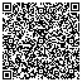 QR-код с контактной информацией организации Чингис, ИП
