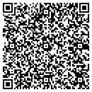 QR-код с контактной информацией организации Dejavi
