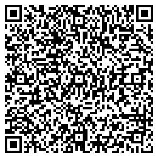 QR-код с контактной информацией организации Стая, ООО