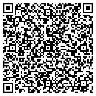 QR-код с контактной информацией организации Alsay, TOO