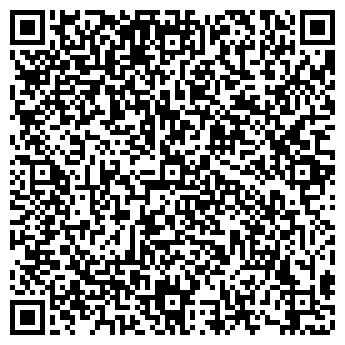 QR-код с контактной информацией организации Николайчук, ЧП