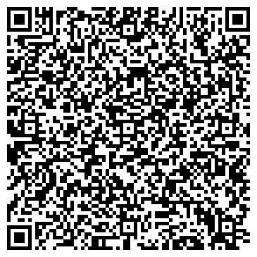 QR-код с контактной информацией организации Silverwings, Компания