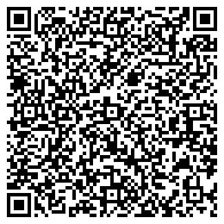 QR-код с контактной информацией организации Магнитик, ЧП