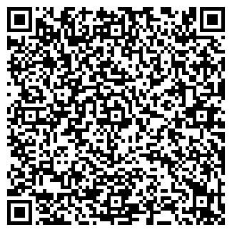 QR-код с контактной информацией организации Place.kz, ИП