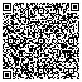 QR-код с контактной информацией организации DvGroup
