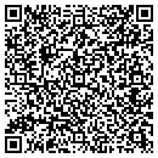 QR-код с контактной информацией организации WellnessLife