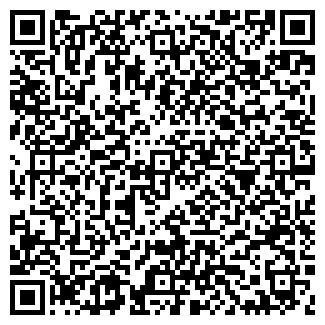 QR-код с контактной информацией организации Леди, ООО