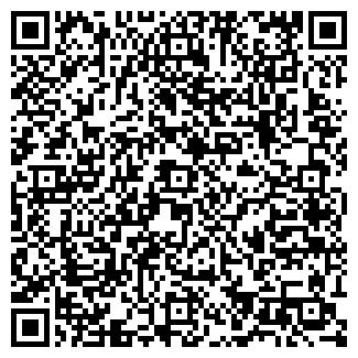 QR-код с контактной информацией организации Елчиди, ИП