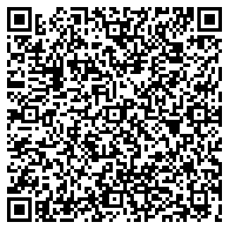 QR-код с контактной информацией организации Алёна, ИП