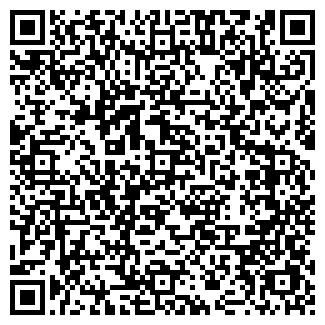QR-код с контактной информацией организации Николь, ТОО