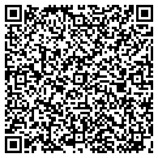 QR-код с контактной информацией организации Ноэль, ТОО