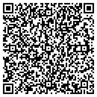 QR-код с контактной информацией организации Анель, ИП