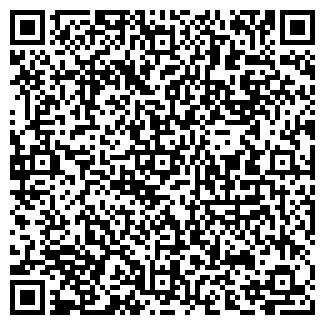 QR-код с контактной информацией организации Асем, ИП