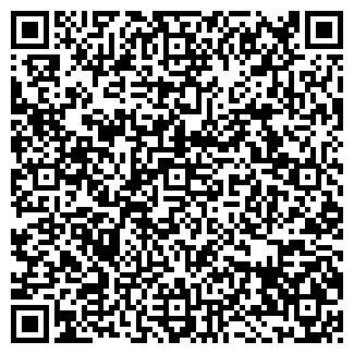 QR-код с контактной информацией организации GALSON, ИП