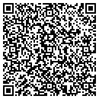 QR-код с контактной информацией организации REAL VIVA, ИП