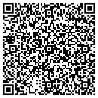 QR-код с контактной информацией организации Тatoo, салон, ИП