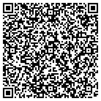 QR-код с контактной информацией организации Алина, ИП