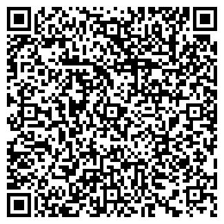 QR-код с контактной информацией организации Вероника, ИП