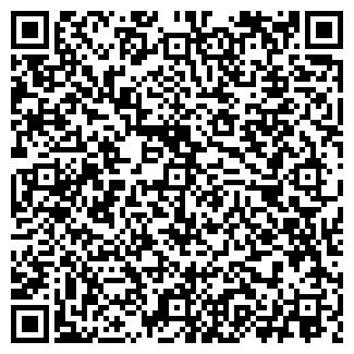 QR-код с контактной информацией организации Багира, ИП