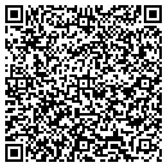 QR-код с контактной информацией организации Spasalon, Проект