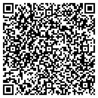 QR-код с контактной информацией организации Салыкбаев,ИП