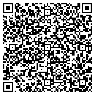 """QR-код с контактной информацией организации ИП """"Алия"""""""