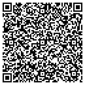 QR-код с контактной информацией организации Алика, ЧП