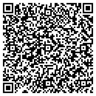 QR-код с контактной информацией организации Нур-Али, ИП