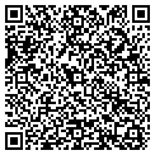 QR-код с контактной информацией организации Avtosvit, ЧП