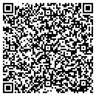 QR-код с контактной информацией организации Дизель, ДП