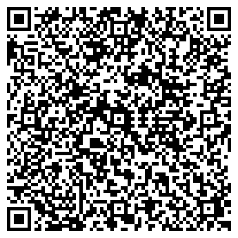 QR-код с контактной информацией организации Черная молния, ИП