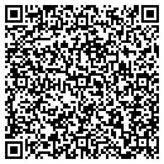 QR-код с контактной информацией организации Субъект предпринимательской деятельности Bagaж