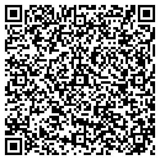 QR-код с контактной информацией организации ИП АМИР-НС