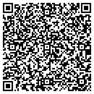 QR-код с контактной информацией организации Другая ИП Роднев