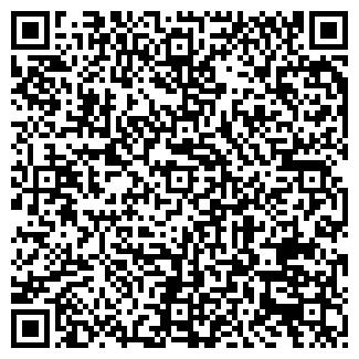 QR-код с контактной информацией организации Instar