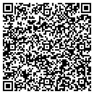 QR-код с контактной информацией организации Святковый