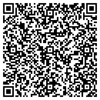 QR-код с контактной информацией организации SVEB CARGO