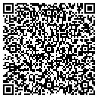 QR-код с контактной информацией организации Домовоз, ЧП